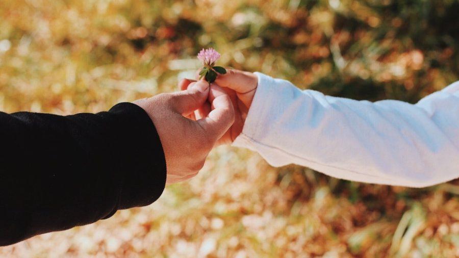 Infak, Sedekah dan Zakat Apa Bedanya?