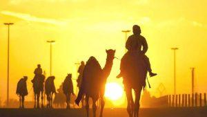 Read more about the article Kisah Abu Bakar dan Umar bin Khatab Berlomba dalam Kebaikan